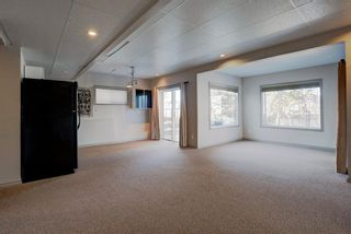 Photo 25: 20 Skara Brae Close: Carstairs Detached for sale : MLS®# A1071724