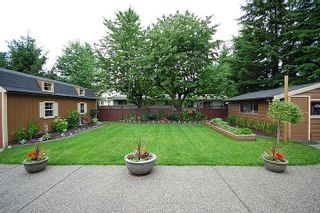 Photo 37: 19329 123rd AVENUE in PITT MEADOWS: House for sale