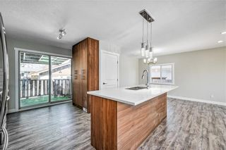 Photo 8: 4931 MARIAN Road NE in Calgary: Marlborough Detached for sale : MLS®# C4304951
