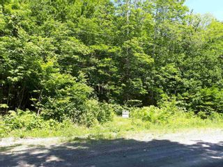 Photo 4: Meiklefield Road in Meiklefield: 108-Rural Pictou County Vacant Land for sale (Northern Region)  : MLS®# 202117504