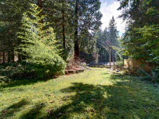 Photo 11: 3004 LOWER Road: Roberts Creek House for sale (Sunshine Coast)  : MLS®# R2249400