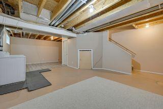 Photo 46: 20235 56 Ave NW: Edmonton House Duplex for sale : MLS®# E4238994