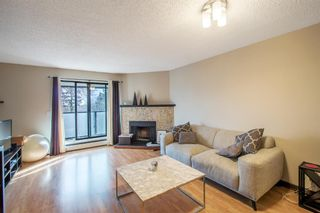 Photo 3: 301 1821 17A Street SW in Calgary: Bankview Apartment for sale : MLS®# A1131223