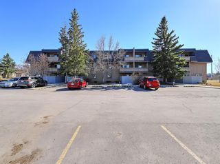 Photo 23: 2104 3115 51 Street SW in Calgary: Glenbrook Apartment for sale : MLS®# A1097152