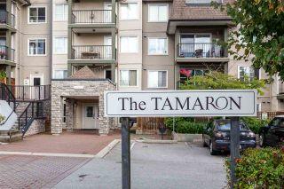 """Photo 20: 206 12083 92A Avenue in Surrey: Queen Mary Park Surrey Condo for sale in """"Tamaron"""" : MLS®# R2542035"""