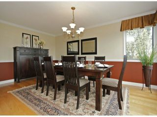 Photo 7: 3615 NICO WYND Drive in Surrey: Elgin Chantrell Home for sale ()  : MLS®# F1419011