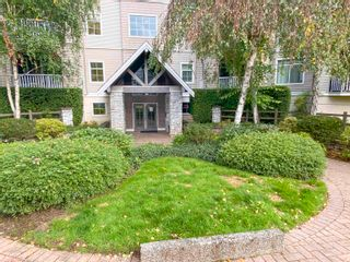 """Photo 34: 313 20897 57 Avenue in Langley: Langley City Condo for sale in """"Arbour Lane"""" : MLS®# R2623448"""