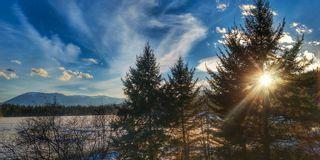Photo 101: 3197 White Lake Road in Tappen: Little White Lake House for sale (Tappen/Sunnybrae)  : MLS®# 10131005