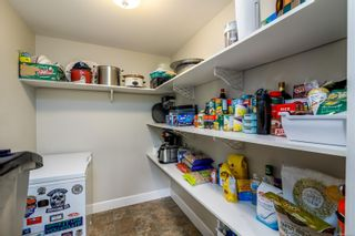 Photo 15: 1137 Nicholson St in : SE Lake Hill House for sale (Saanich East)  : MLS®# 884531