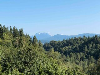 Photo 39: 6750 272 Street in Langley: County Line Glen Valley House for sale : MLS®# R2597983
