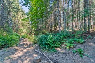 Photo 45: 6611 Northeast 70 Avenue in Salmon Arm: Lyman Hill House for sale : MLS®# 10235666