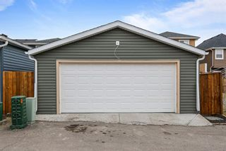 Photo 30: 38 Redstone Common NE in Calgary: Redstone Detached for sale : MLS®# A1100551