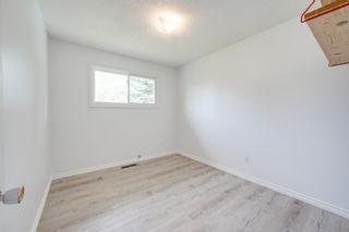 Photo 22: 10916 36A Avenue in Edmonton: Zone 16 House for sale : MLS®# E4246893