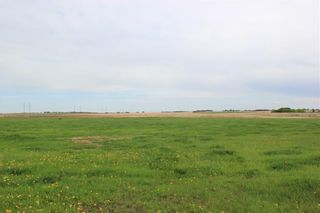 Photo 47: 255122 RANGE ROAD 283 in Rural Rocky View County: Rural Rocky View MD Detached for sale : MLS®# C4299802