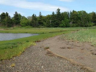 Photo 3: Lot 2 Shore Road in Lower Barneys River: 108-Rural Pictou County Vacant Land for sale (Northern Region)  : MLS®# 202008057
