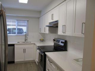 "Photo 1: 11697 FULTON Street in Maple Ridge: East Central Townhouse for sale in ""Cedar Grove"" : MLS®# R2356656"