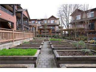 """Photo 19: 38 19478 65TH Avenue in Surrey: Clayton Condo for sale in """"Sunset Grove"""" (Cloverdale)  : MLS®# F1406717"""