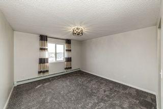 Photo 6: 329 16221 95 Street in Edmonton: Zone 28 Condo for sale : MLS®# E4250515