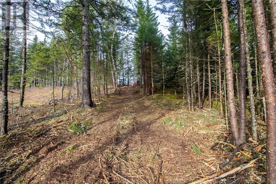 Photo 7: Photos: Lot 15-12 Burman in Sackville: Vacant Land for sale : MLS®# M127092