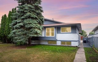 Photo 1: 378 Mandalay Drive in Winnipeg: Maples Residential for sale (4H)  : MLS®# 202118338