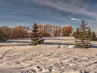 Photo 35: 333072 Range Road 263: Rural Kneehill County Detached for sale : MLS®# A1056668