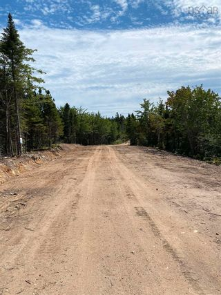 Photo 4: Lot 4 36056 Cabot Trail in Ingonish: 209-Victoria County / Baddeck Vacant Land for sale (Cape Breton)  : MLS®# 202119814