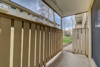 Photo 21: 4107 385 Patterson Hill SW in Calgary: Patterson Apartment for sale : MLS®# A1143013