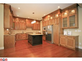 """Photo 6: 7783 211A ST in Langley: Willoughby Heights House for sale in """"Yorkson South"""" : MLS®# F1125790"""