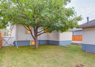 Photo 43: 1611 16A Street SE in Calgary: Inglewood Detached for sale : MLS®# A1135562