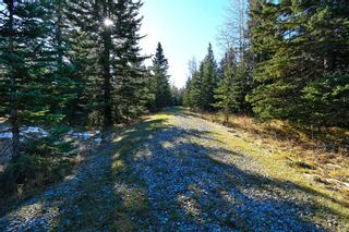 Photo 31: 20.02 Acres +/- NW of Cochrane in Rural Rocky View County: Rural Rocky View MD Land for sale : MLS®# A1065950