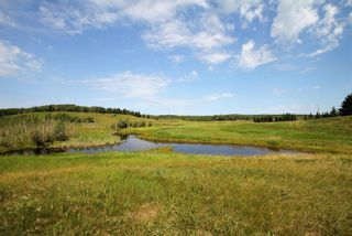 Photo 22: Rg Rd 120 Twp Rd 610: Rural St. Paul County Rural Land/Vacant Lot for sale : MLS®# E4263791
