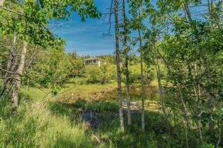 Photo 38: 25205 Bearspaw Place in Rural Rocky View County: Rural Rocky View MD Detached for sale : MLS®# A1121781
