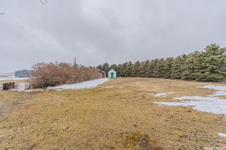 Photo 36: Zenert Acreage in Colonsay: Residential for sale (Colonsay Rm No. 342)  : MLS®# SK846906