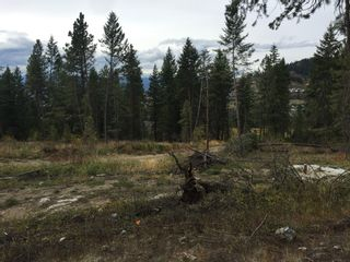 Photo 7: 6575 Dixon Dam Road in Vernon: South BX Vacant Land for sale (North Okanagan)  : MLS®# 10106215