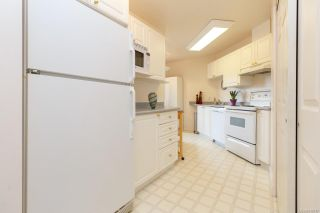Photo 8: 206 1687 Poplar Ave in Saanich: SE Mt Tolmie Condo for sale (Saanich East)  : MLS®# 840047