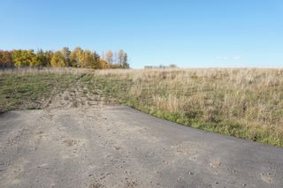Photo 9: 31 53214 RR13: Rural Parkland County Rural Land/Vacant Lot for sale : MLS®# E4266458