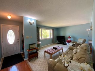 Photo 11: 101 Mayday Crescent: Wetaskiwin House for sale : MLS®# E4253724