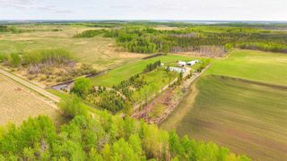 Photo 14: 52117 RGE RD 53: Rural Parkland County House for sale : MLS®# E4246255