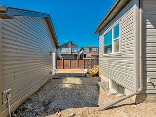 Photo 42: 417 Chinook Gate Square SW: Airdrie Detached for sale : MLS®# A1096458