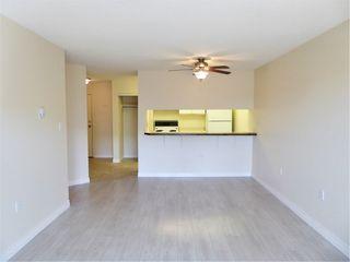 Photo 8: 326 10636 120 Street NW in Edmonton: Zone 08 Condo for sale : MLS®# E4239002
