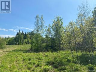 Photo 36: 74.62 Acres Route 127 in Bayside: Vacant Land for sale : MLS®# NB058351