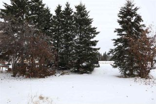 Photo 31: 4702 53 Avenue: Thorsby House for sale : MLS®# E4220799
