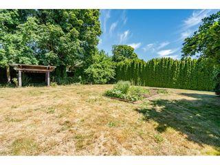 "Photo 36: 16865 18 Avenue in Surrey: Pacific Douglas House for sale in ""Hazelmere Estates"" (South Surrey White Rock)  : MLS®# R2590320"