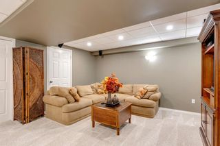 Photo 34: 71 Mt Robson Circle SE in Calgary: McKenzie Lake Detached for sale : MLS®# A1102816