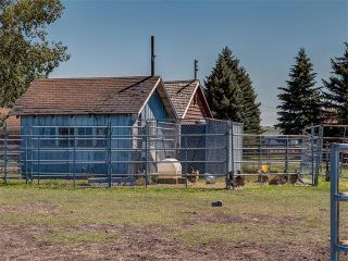 Photo 42: 354132 48 Street E: Rural Foothills M.D. House for sale : MLS®# C4096683