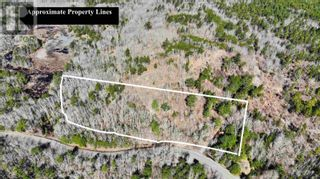 Photo 3: Acreage Labelle Road in Molega: Vacant Land for sale : MLS®# 202108257