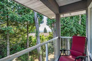 Photo 19: 12807 54 Avenue in Surrey: Panorama Ridge House for sale : MLS®# R2426492