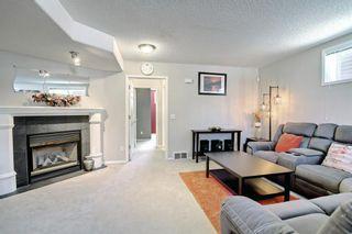Photo 29: 67 Tarington Place NE in Calgary: Taradale Detached for sale : MLS®# A1146117