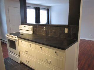Main Photo: 35 5627 105 Street in Edmonton: Zone 15 Condo for sale : MLS®# E4228529