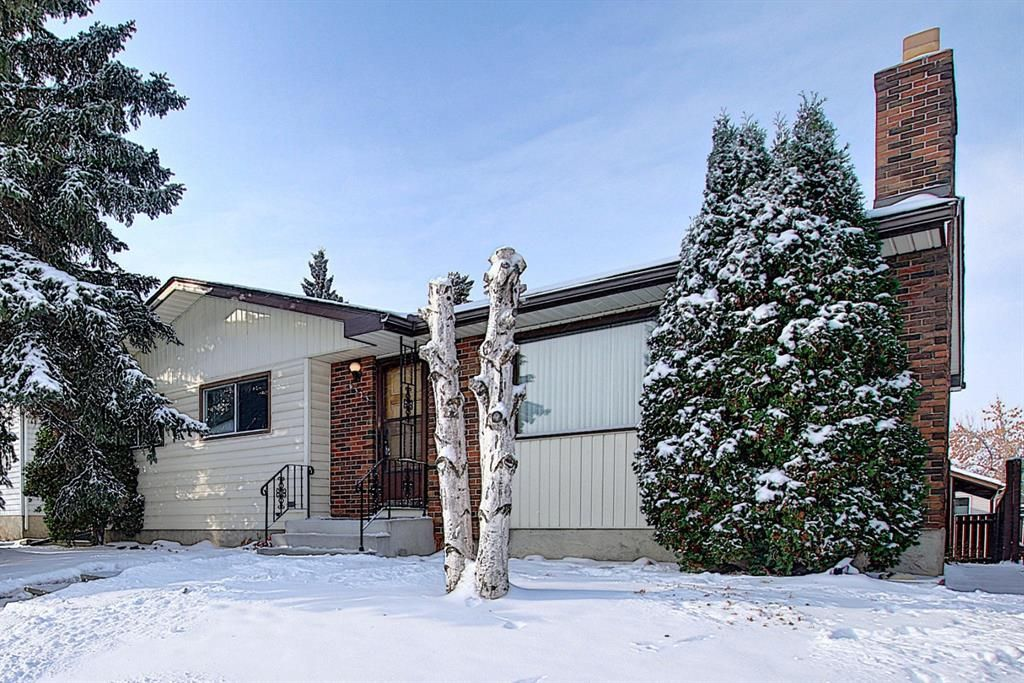 Main Photo: 4323 49 Street NE in Calgary: Whitehorn Detached for sale : MLS®# A1043612